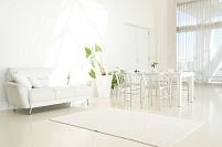 リビングの白いソファとテーブルコーディネートと観葉植物