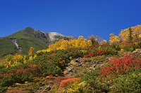 長野県 紅葉と乗鞍岳