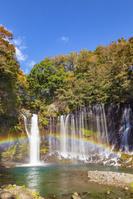 静岡県の白糸の滝の紅葉と虹