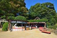 岡山後楽園 茶店