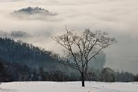 北海道 弟子屈町 藻琴山から望む雲海に覆われた屈斜路湖