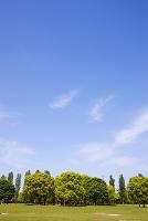 大阪市 鶴見緑地公園
