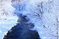 北海道 樹氷と川