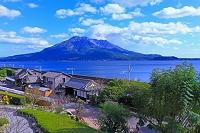 桜島と仙巌園