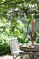 新緑が一杯の庭