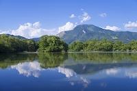 滋賀県 米原市 三島池と伊吹山