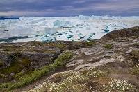 グリーンランド セルメルミュイットハイキングコースから氷河