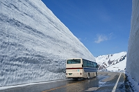 富山県 立山町 立山雪の大谷