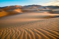 アラブ首長国連邦 ルブアルハリ砂漠 リワオアシス