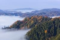 岡山県 雲海と備中松山城
