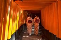京都府 伏見稲荷大社 千本鳥居と和装の女性