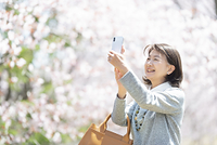 桜の前でスマホで写真を撮るシニア女性