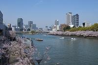 大阪府 八軒家浜船着場とアクアライナーと中之島