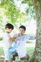 新緑と昆虫採集する日本人親子