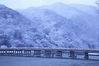 京都府 雪の嵐山