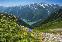 富山県 スバリ岳・赤沢岳鞍部より立山