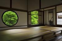京都府 源光庵 迷いの窓と悟りの窓と新緑の庭