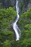 北海道 上川町 銀河の滝