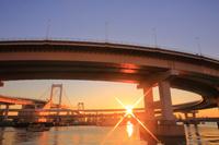東京都 レインボーブリッジ朝日