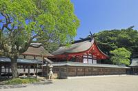 福岡県 宗像大社辺津宮の本殿