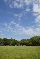 東京都 赤塚公園