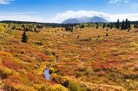 カナダ クルアニ国立公園