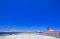 神奈川県 大桟橋の展望デッキ