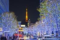 東京都 けやき坂通りの夜景