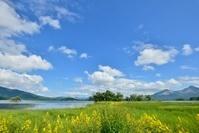 夏空と湖畔の風景