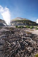 北海道 硫黄山とハイマツの枯れ木