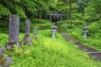 山梨県 富士山吉田口登山道の馬返 石碑群と石鳥居