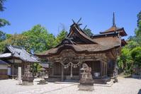 兵庫県 丹波市 八幡神社