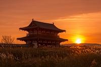 奈良県 奈良市 平城宮跡 朱雀門