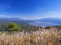長野県 高ボッチ高原よりススキと諏訪湖と八ヶ岳と富士山と南ア...