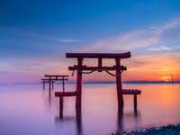 佐賀県 海中鳥居