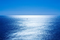 千葉県 光る海