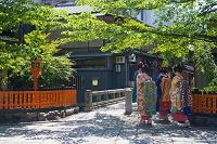 京都府 祇園白川巽橋, 体験舞妓
