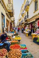 モロッコ タンジェ メディナ