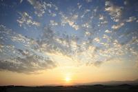 北海道 朝日昇る朝焼けの麦 麦畑