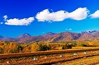 北海道 ニセコ連峰と畑