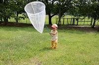 子供の成長 男の子(1才) 初めての虫とり