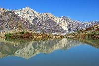 長野県 朝の八方池と白馬三山