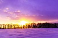 北海道 雪野原と元旦の朝日
