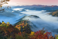 滋賀県 おにゅう峠の雲海