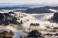 日本 新潟県 雲海の星峠の棚田朝景