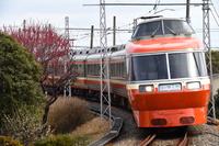 神奈川県 箱根登山鉄道 カーブを曲がる7000形特急スーパーはこ...