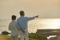 海を見つめるシニアカップル