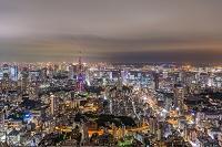 東京都 ライトダウン東京タワー