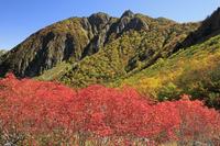 長野県 紅葉の涸沢と屏風の頭