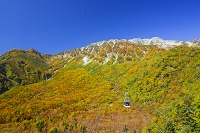 富山県 大観峰の紅葉
